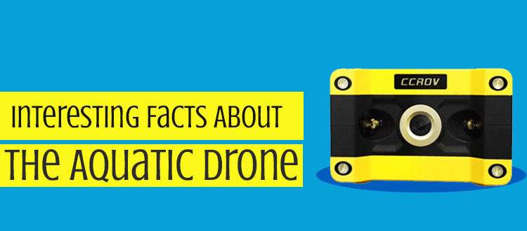 Interesting Facts About The Aquatic Drone